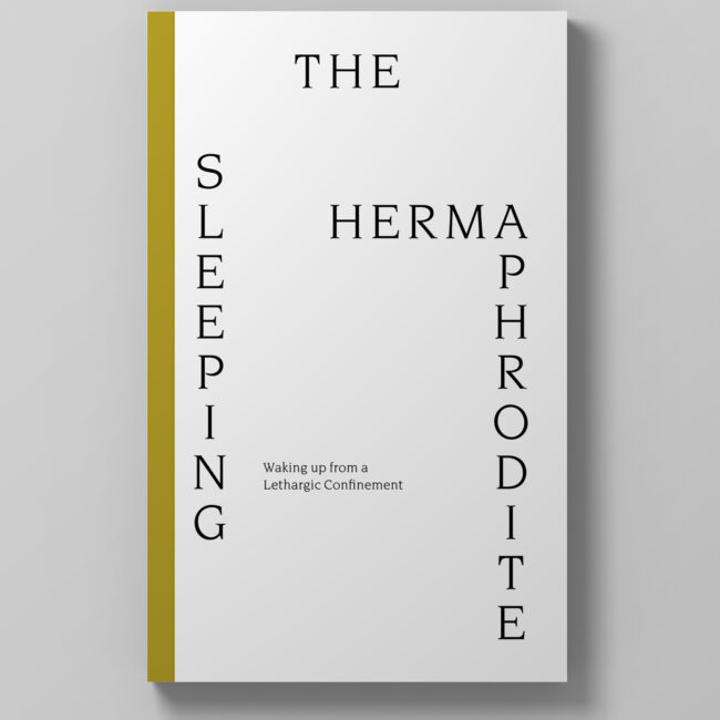 The Sleeping Hermaphrodite